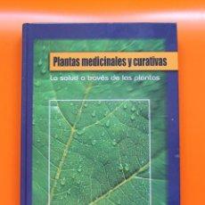 Libros de segunda mano: PLANTAS MEDICINALES Y CURATIVAS: LA SALUD A TRAVÉS DE LAS PLANTAS DE RAMON FORÈS. Lote 147761802