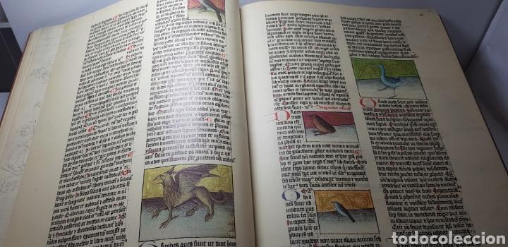 Libros de segunda mano: DE NATURA RERUM (LIB. IV-XII). TACUINUM SANITATIS. CODICE C-67. 1974. - Foto 4 - 147824712