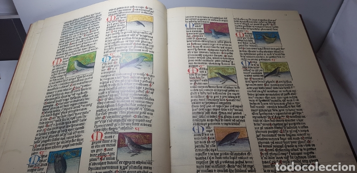 Libros de segunda mano: DE NATURA RERUM (LIB. IV-XII). TACUINUM SANITATIS. CODICE C-67. 1974. - Foto 5 - 147824712