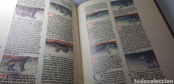 Libros de segunda mano: DE NATURA RERUM (LIB. IV-XII). TACUINUM SANITATIS. CODICE C-67. 1974. - Foto 6 - 147824712