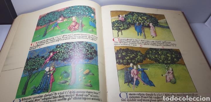 Libros de segunda mano: DE NATURA RERUM (LIB. IV-XII). TACUINUM SANITATIS. CODICE C-67. 1974. - Foto 8 - 147824712