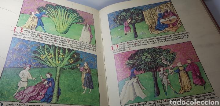 Libros de segunda mano: DE NATURA RERUM (LIB. IV-XII). TACUINUM SANITATIS. CODICE C-67. 1974. - Foto 9 - 147824712
