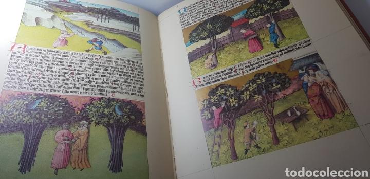 Libros de segunda mano: DE NATURA RERUM (LIB. IV-XII). TACUINUM SANITATIS. CODICE C-67. 1974. - Foto 10 - 147824712