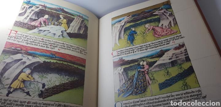 Libros de segunda mano: DE NATURA RERUM (LIB. IV-XII). TACUINUM SANITATIS. CODICE C-67. 1974. - Foto 11 - 147824712