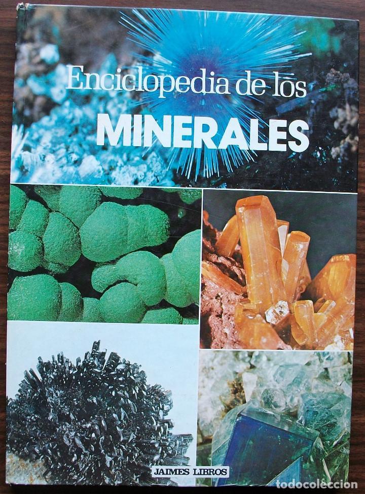 ENCICLOPEDIA DE LOS MINERALES. PIERRE BARIAND. (Libros de Segunda Mano - Ciencias, Manuales y Oficios - Paleontología y Geología)