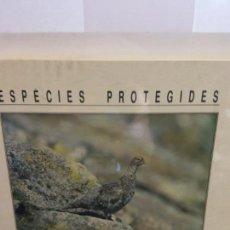 Libros de segunda mano: STQ.ESPECIES PROTEGIDES.EDT, DEPARTAMENT D AGRICULTURA.BRUMART TU LIBRERIA.. Lote 148196950