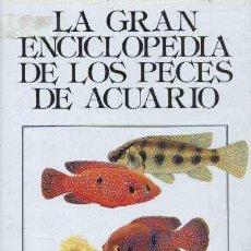 Libros de segunda mano: LA GRAN ENCICLOPEDIA DE LOS PECES DE ACUARIO. PETROVICKI, IVAN. AYP-008. Lote 148205646