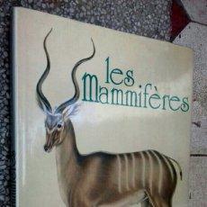 Libros de segunda mano: LES MAMMIFÈRES - INCREÍBLE BONITO GRAVURES DE AÑO 1734 A 1906 DE ANIMALES - MUY GRAN TAMAÑO. Lote 148210562