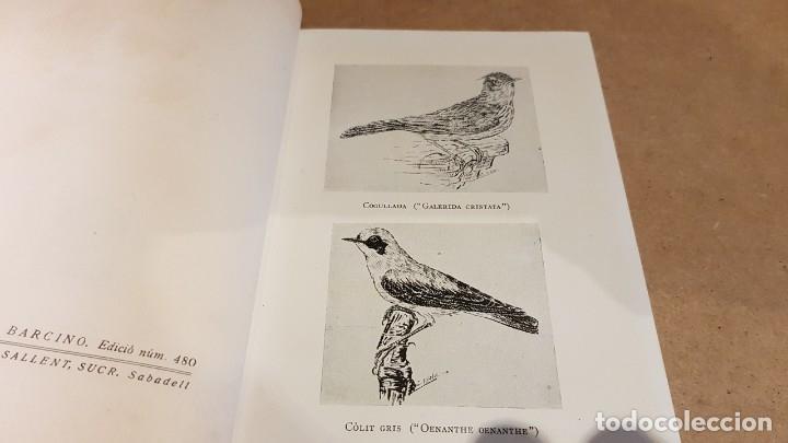 Libros de segunda mano: ELS OCELLS DE LES TERRES CATALANES / VOL II / JOAQUIM MALUQUER I SOSTRES / ED - BARCINO-1956. - Foto 2 - 148892570
