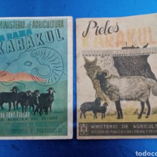 Libros de segunda mano: 2 LIBROS , LA RAZA KARAKUL Y PIELES KARAKUL AÑOS 1940. Lote 148949001