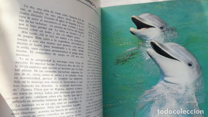 EL FABULOSO REINO ANIMAL. SELECCIONES READER´S DIGEST. (Libros de Segunda Mano - Ciencias, Manuales y Oficios - Biología y Botánica)