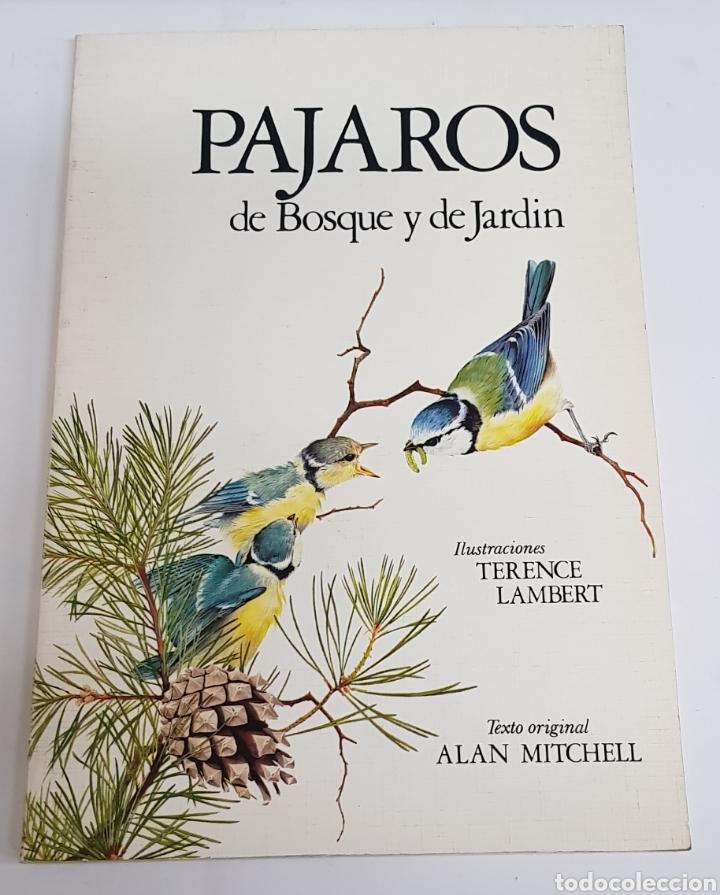 PAJAROS DE BOSQUE Y JARDIN - ALAN MICHELL - ARM06 (Libros de Segunda Mano - Ciencias, Manuales y Oficios - Biología y Botánica)