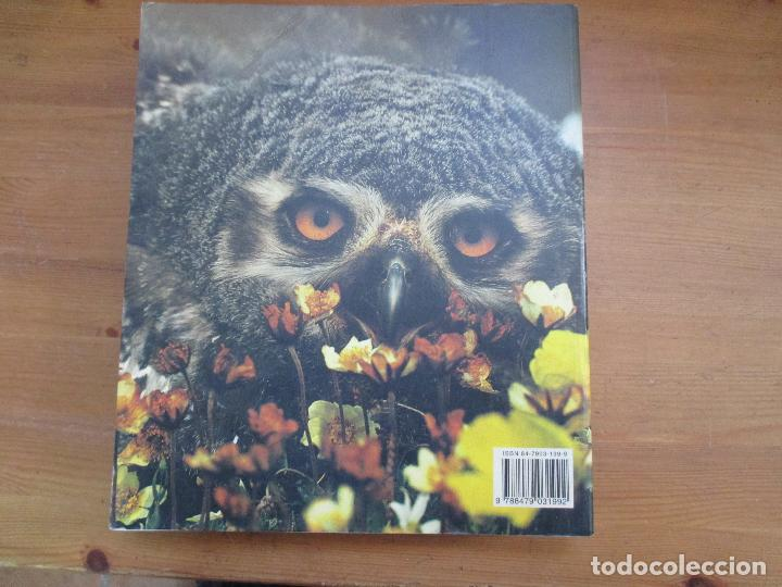Libros de segunda mano: Invitación a la biología. Helena Curtis. Editorial Médica Panamericana - Foto 3 - 149686654
