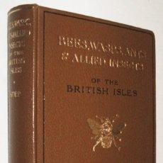 Libros de segunda mano: 1932 - GUÍA DE HIMENÓPTEROS - ENTOMOLOGIA - BEES,WASPS, ANTS - EDWARD STEP - INGLES - LAMINAS COLOR. Lote 150143870