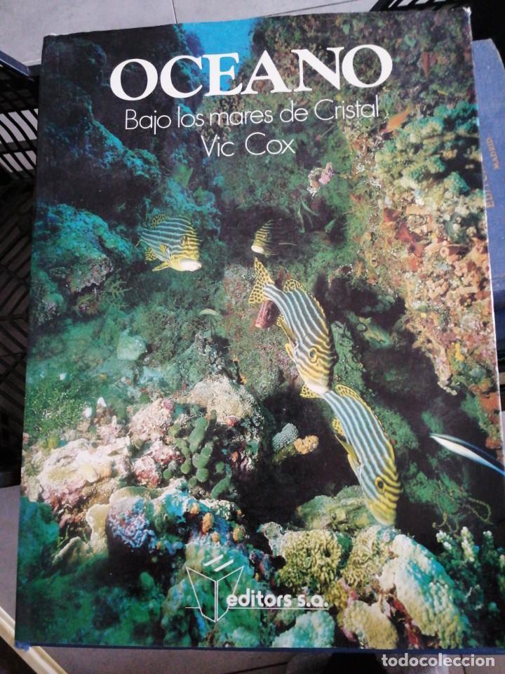 OCÉANO BAJO LOS MARES DE CRISTAL VIC COX (Libros de Segunda Mano - Ciencias, Manuales y Oficios - Biología y Botánica)