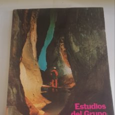 Libros de segunda mano: ESTUDIOS DEL GRUPO ESPELEOLOGICO ALAVES - 1980 - TDK9. Lote 150553278