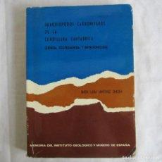 Libros de segunda mano: BRAQUIÓPODOS CARBONÍFEROS DE LA CORDILLERA CANTÁBRICA M.L. MARTÍNEZ CHACÓN 1979. Lote 150635114