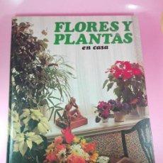 Libros de segunda mano: LIBRO-FLORES Y PLANTAS EN CASA-EDITORIAL HMB,SA-1979-128 PÁGINAS-NUEVO-VER FOTOS.. Lote 150698490