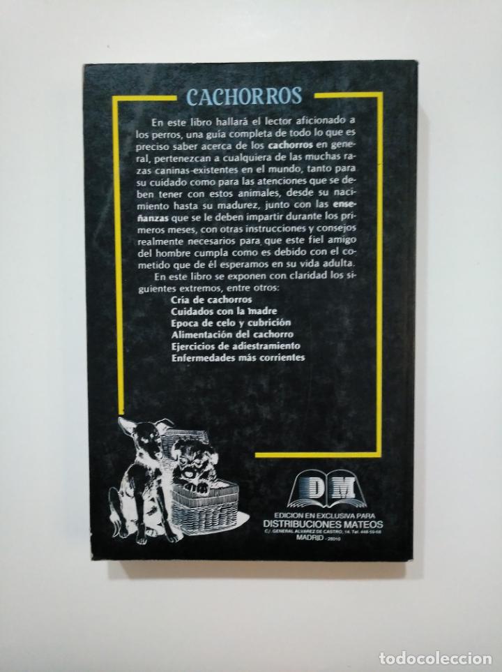 Libros de segunda mano: CACHORROS. - ALAN RUSELL. EDITORS S.A. TDK361 - Foto 2 - 150817306