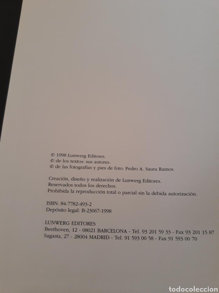 Libros de segunda mano: Libro cuevas de Altamira. CANTABRIA. - Foto 2 - 151647796