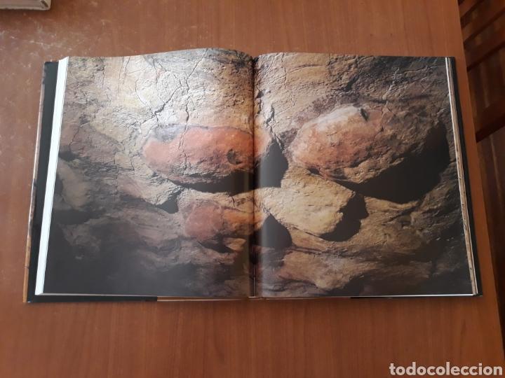 Libros de segunda mano: Libro cuevas de Altamira. CANTABRIA. - Foto 3 - 151647796