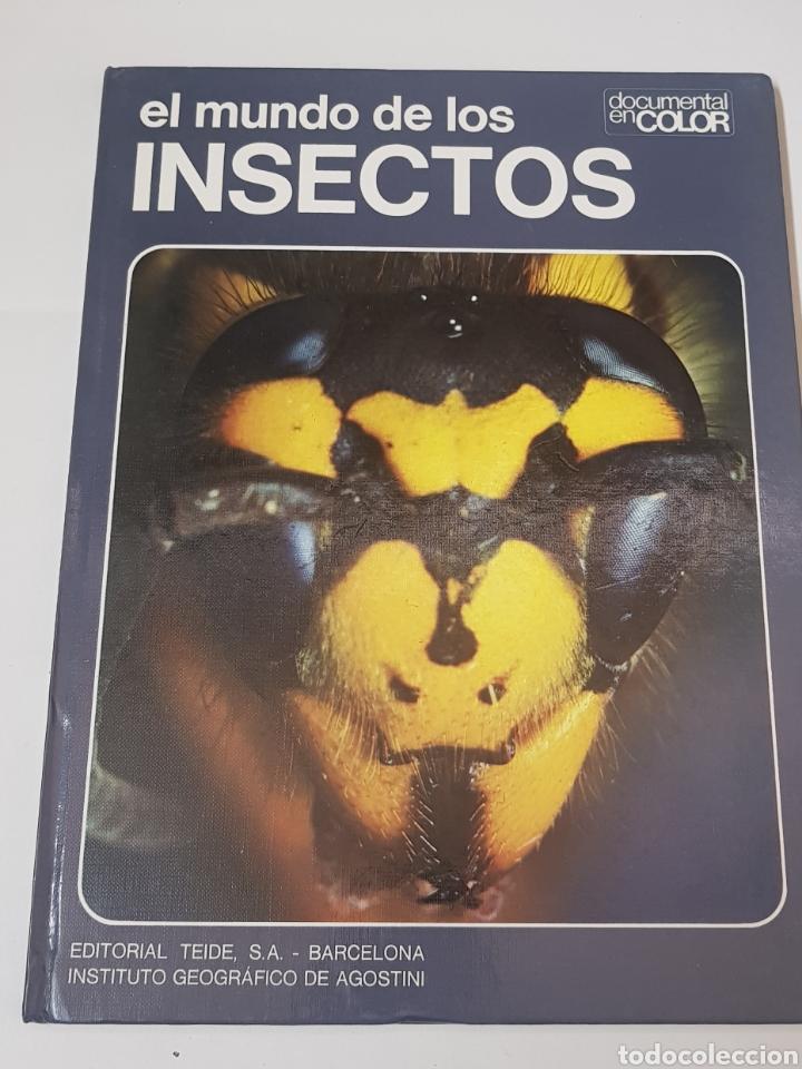 EL MUNDO DE LOS INSECTOS - DOCUMENTAL EN COLOR - ED. TEIDE - AGOSTINI - 1973 - ARM08 (Libros de Segunda Mano - Ciencias, Manuales y Oficios - Biología y Botánica)