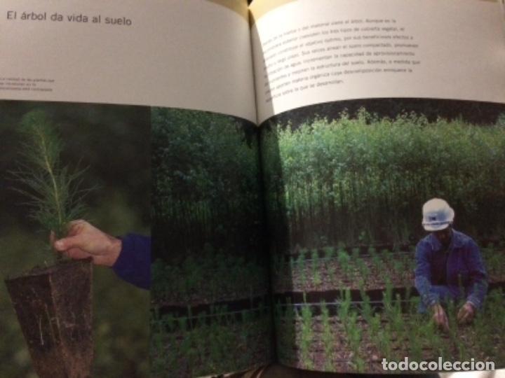 Libros de segunda mano: Vida sobre estéril. La rehabilitación de la escombrera exterior de la mina de As Pontes - Foto 7 - 152054054