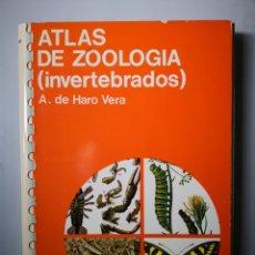 Libros de segunda mano: ATLAS DE ZOOLOGIA DE INVERTEBRADOS- EDICIONES JOVER. Lote 154273954