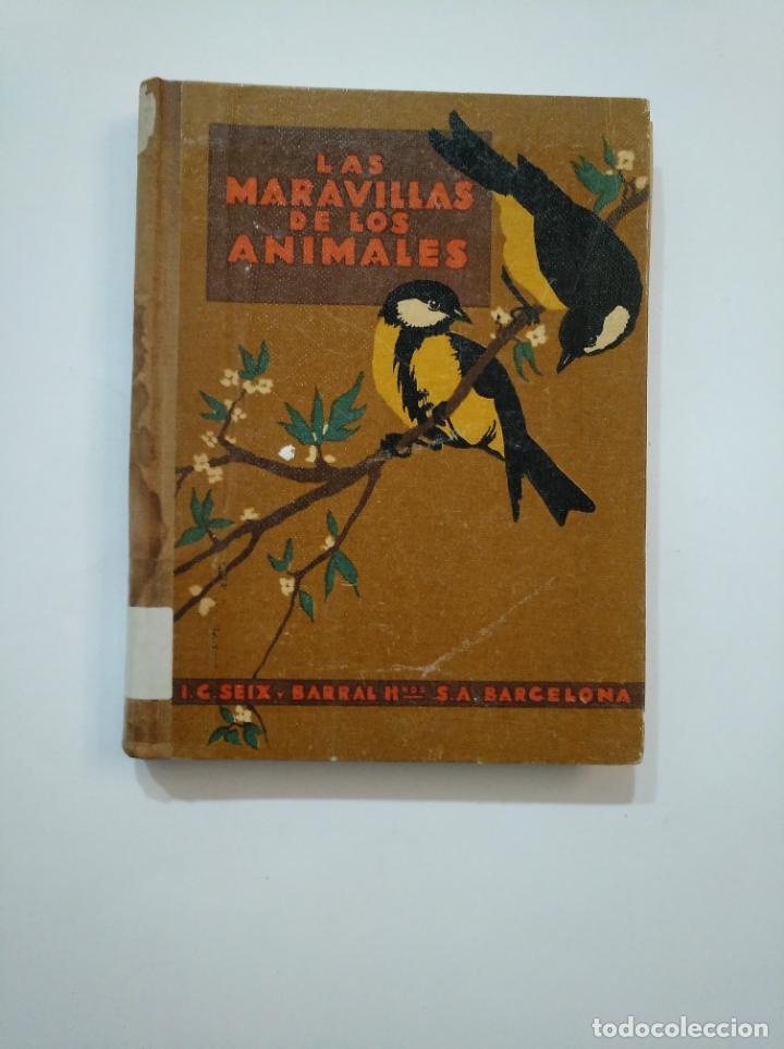 LAS MARAVILLAS DE LOS ANIMALES. - BALLVÉ, AGUSTÍN. SEIX BARRAL 1948. TDK372 (Libros de Segunda Mano - Ciencias, Manuales y Oficios - Biología y Botánica)