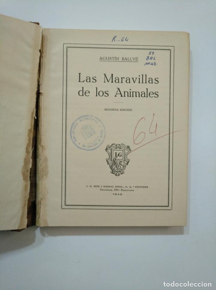 Libros de segunda mano: LAS MARAVILLAS DE LOS ANIMALES. - BALLVÉ, AGUSTÍN. SEIX BARRAL 1948. TDK372 - Foto 3 - 154316850