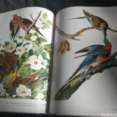 Libros de segunda mano: ANDUBONS BIRDS OF AMERICA. Lote 154430180