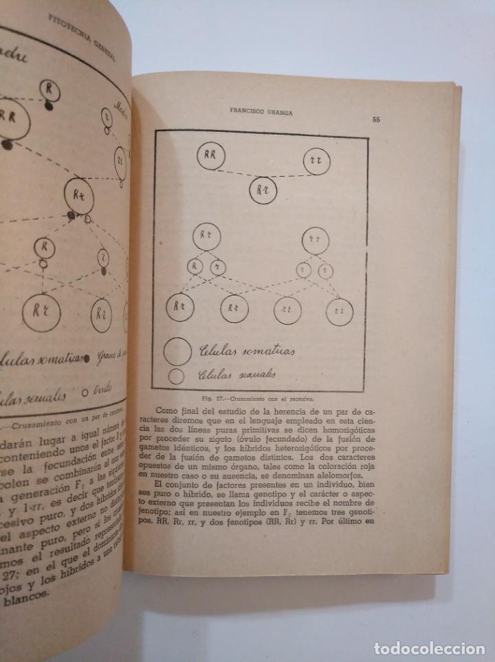 Libros de segunda mano: FITOTECNIA. NORMAS GENERALES DE CULTIVO. - URANGA GALDIANO, FRANCISCO. TDK373 - Foto 2 - 154658222
