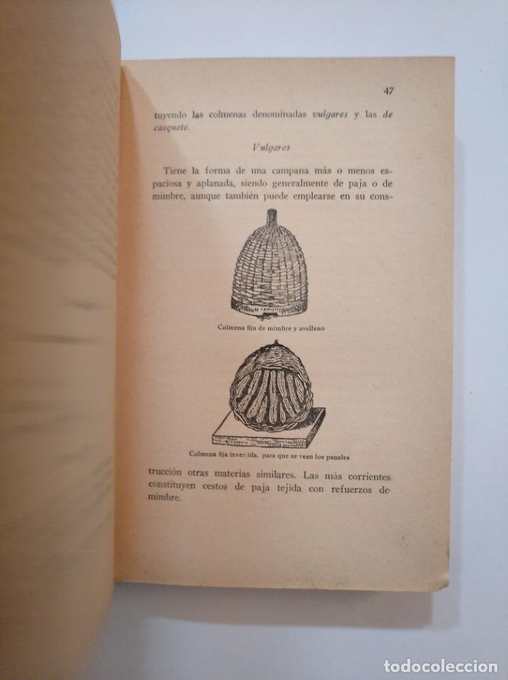 Libros de segunda mano: LA ABEJA PRODUCTIVA. MÉTODOS MODERNOS DE APICULTURA PRÁCTICA. 1935. MARIO ROBLES. tdk373 - Foto 2 - 154659822