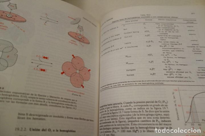 Libros de segunda mano: BIOQUÍMICA HUMANA- - Foto 10 - 156423766
