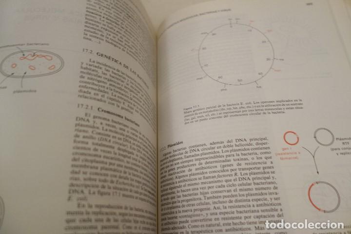 Libros de segunda mano: BIOQUÍMICA HUMANA- - Foto 11 - 156423766