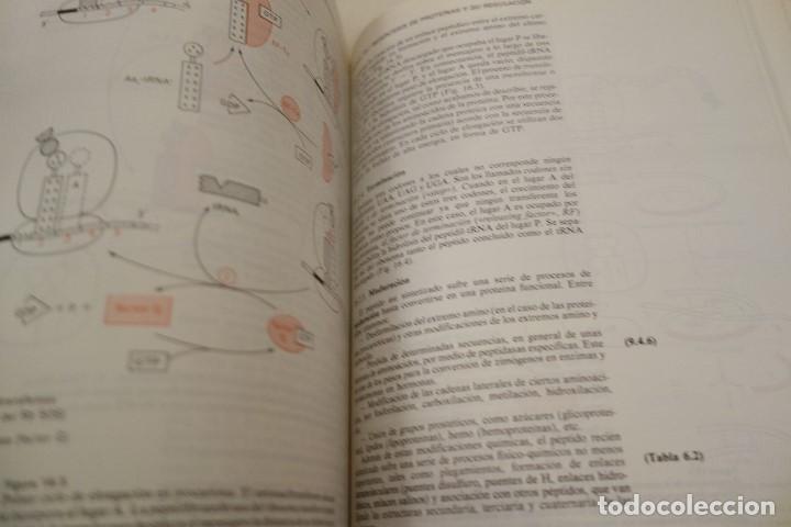 Libros de segunda mano: BIOQUÍMICA HUMANA- - Foto 12 - 156423766