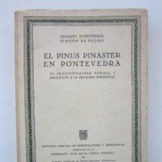 Libros de segunda mano: IGNACIO ECHEVERRÍA Y SIMEÓN DE PEDRO. EL PINUS PINASTER EN PONTEVEDRA. 1948. Lote 156842654