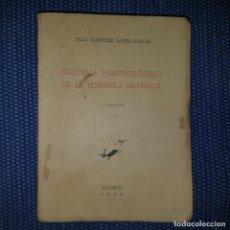 Libros de segunda mano: MARTÍNEZ SANTA OLALLA: ESQUEMA PALETNOLÓGICO DE LA PENÍNSULA HISPÁNICA. Lote 157128598
