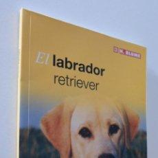 Libros de segunda mano: EL LABRADOR RETRIEVER: GUÍA PRÁCTICA - BLUME. Lote 157666725
