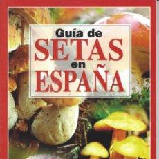 Libros de segunda mano: GUIA DE SETAS EN ESPAÑA. JORDI VILA GARCIA.. Lote 157853218
