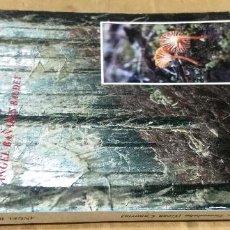 Libros de segunda mano: ÁNGEL BAÑANES BAUDET, HONGOS DE LOS PINARES DE TAMADABA (GRAN CANARIA), INSTITUTO DE ESTUDIOS CANARI. Lote 186365706