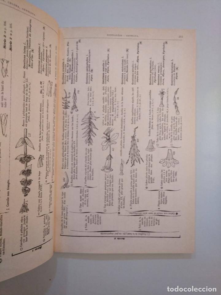 Libros de segunda mano: FLORE COMPLÈTE PORTATIVE DE LA FRANCE, DE LA SUISSE ET BELGIQUE - GASTON BONNIER G. DE LAYENS TDK380 - Foto 5 - 158730534