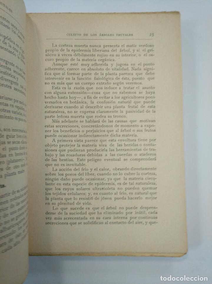 Libros de segunda mano: CULTIVO DE FRUTALES ARBÓREOS Y ARBUSTIVOS EN TODOS LOS CONTINENTES. GONZÁLEZ RETUERTA, MIGUEL TDK382 - Foto 2 - 159473414