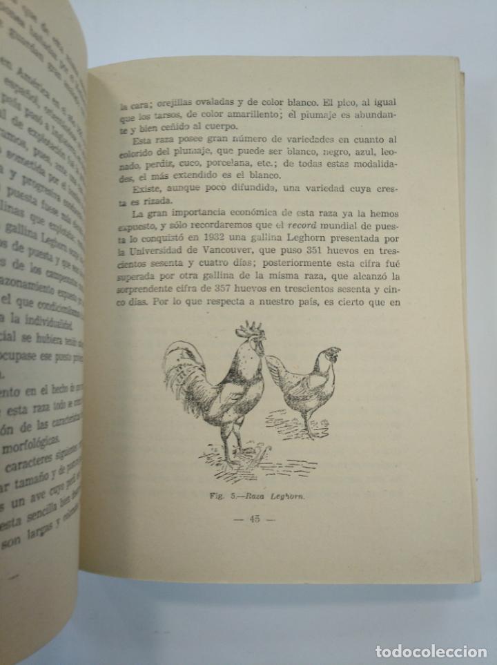 Libros de segunda mano: AVICULTURA. - RAMON RAMOS FONTECHA. - 1943. SECCION FEMENINA DE F.E.T. Y DE LAS J.O.N.S. TDK382 - Foto 2 - 159473666