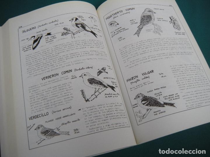 Libros de segunda mano: ESTUDIO DIDÁCTICO DE LA FLORA Y FAÚNA DE UNA COMARCA JUMILLA - YECLA. MURCIA - Foto 3 - 160388402