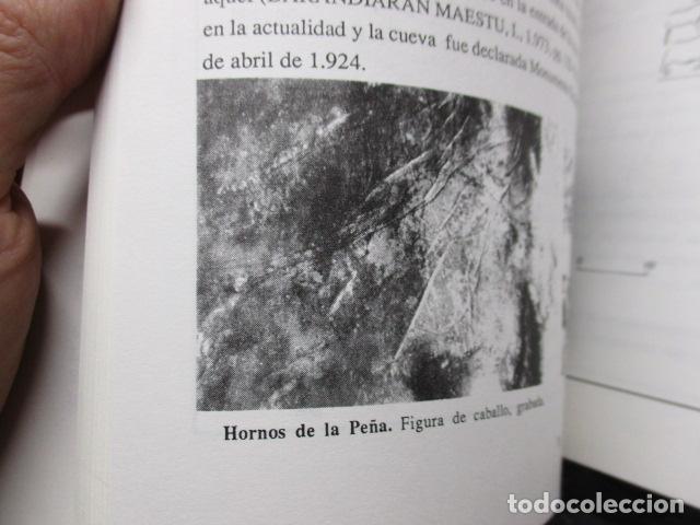 Libros de segunda mano: Las Cuevas con Arte Paleolitico en Cantabria / DIFICIL - Foto 16 - 161024474