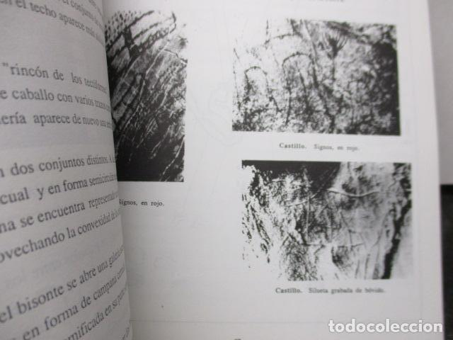 Libros de segunda mano: Las Cuevas con Arte Paleolitico en Cantabria / DIFICIL - Foto 18 - 161024474