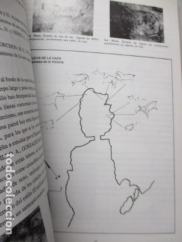 Libros de segunda mano: Las Cuevas con Arte Paleolitico en Cantabria / DIFICIL - Foto 19 - 161024474