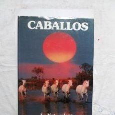 Libros de segunda mano: LA NATURALEZA CABALLOS . Lote 161936170