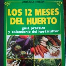 Libros de segunda mano: LOS 12 MESES DEL HUERTO. 1989. ADRIANA CRESPI. EDIT DE VECCHI.. Lote 163395442